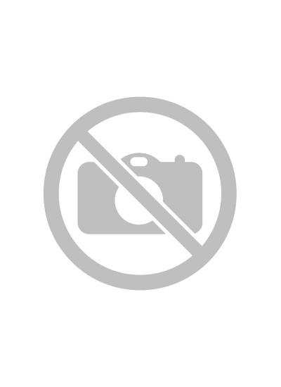 РЕТВИЗАН - ОДИССЕЙ 100 (3 контура уплотнения) - (Металл / Металл)